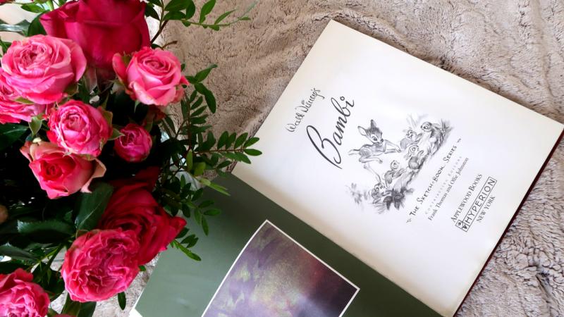 Sketchbook Bambi, mon second livre de la collection !