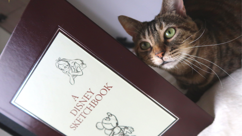 A Disney Sketchbook, un livre de croquis sur tous les films d'animation !
